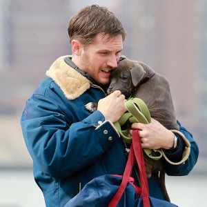 Tom-Hardy-Puppy-Set-NYC-Pictures.jpg