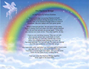 The Rainbow Bridge personalized certificate