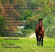 Horse Quotes And Sayings (17)