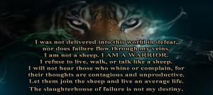 warrior wisdom amp the warrior lifestyle
