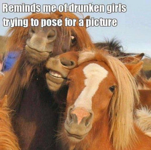 ... Funny Animals , Funny Pictures // Tags: Funny horses - Reminds me of