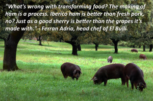 ... wrong with transforming food?
