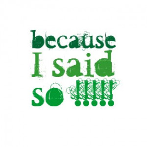 Because, I said, so !!!!!' T shirt by just_saying