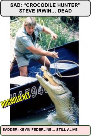 crocodile hunter jokes steve irwin jokes funny crocodile hunter