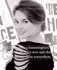 ... shailene woodley quotes celebrities amazing people shailene quotes