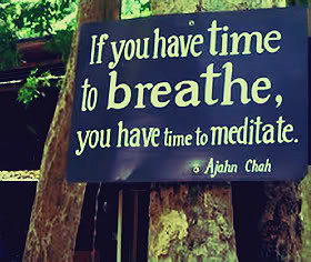 Meditation Quotes & Sayings