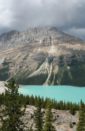 ... :Famous Lakes in Banff National Park, Alberta, Canada - Peyto Lake