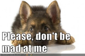 Please, don't be mad at me