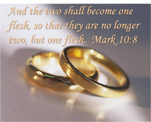 of marriage is a secular and social institution second the bible ...