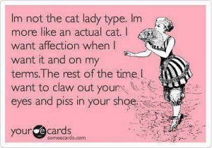 Funny quotes – Im not the cat lady type