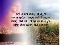 Beautiful Love Quotes In Sinhala