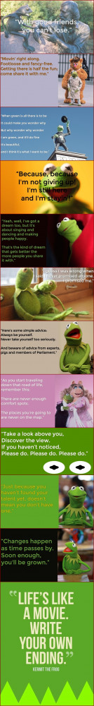 Kermit the Frog Instagram Quotes