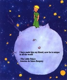 ... for my son Liam's room. Love reading The Little Prince and this quote