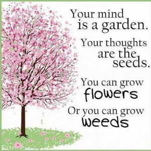 Quote #30 – Your mind is a garden. your thoughts are the seeds. you ...