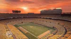NeyLand Stadium Home Of Tennessee VoLunteers Picture