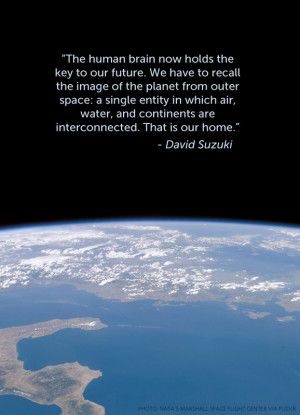 Quotes From David Suzuki