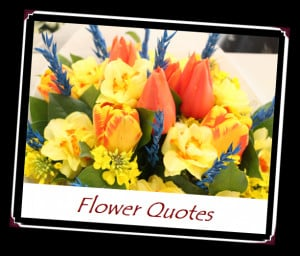 ... quotes! I took this photo of this bouquet at Pike Place Market in