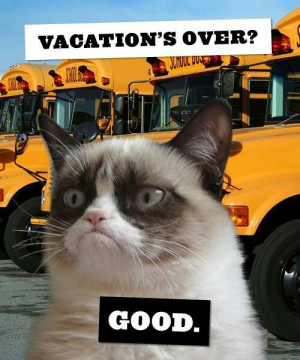 Vacation's over? Good.