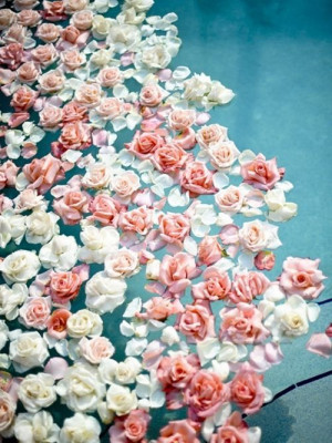 Roses Floating in Water