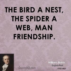 Spider Web Quotes