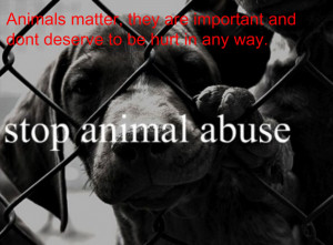 Please Stop Animal Abuse!!! It's Important!!!