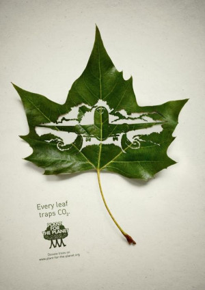 save-environment-quotes-sayings-plants-produce-oxygen.jpg