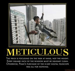 METICULOUS - demotivational poster