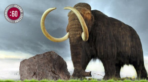 Hendrik Poinar discusses whether we should bring back the mammoth