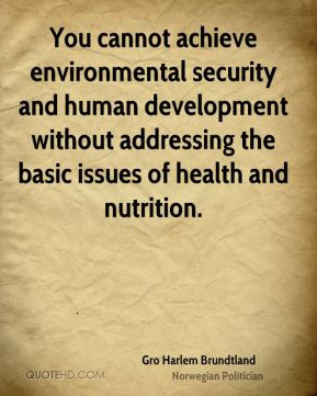 Gro Harlem Brundtland - You cannot achieve environmental security and ...