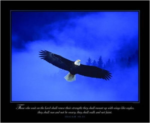 ... Poster – Eagle in the Mist – Motivational and Inspirational Poster