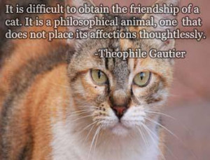 is difficult to obtain the friendship of a cat.It is a philosophical ...