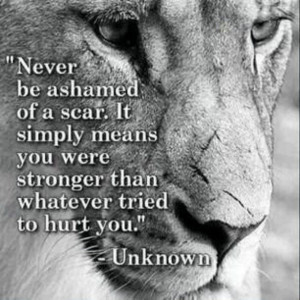 lion, motivation, quotes, scars, strength