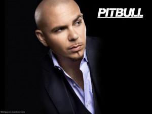 Pitbull (rapper) Pitbull wallpaper