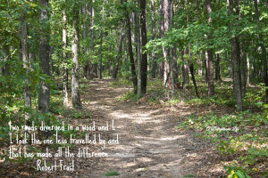 walk-in-the-woods-frost-quote-two-roads