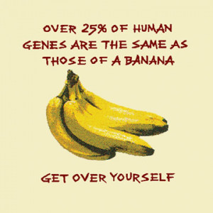 Amazing Banana Facts Showing How It Cures Everything