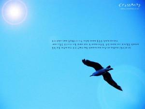 韩国版圣经壁纸 自然风景篇 - 圣经福音风景壁纸10