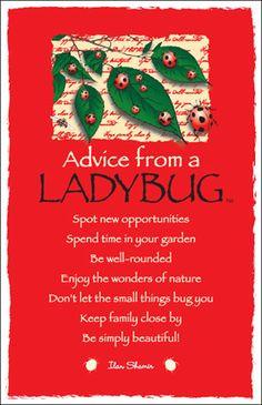 Lady...Bug