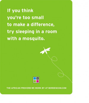 , Mosquito, Make A Difference, Florida Living, Motivational Quotes ...
