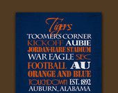 Auburn University Tigers: Pinned by SECfootball101.com
