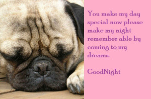 ... make My Night Remember able by Coming to My Dreams ~ Good Night Quote