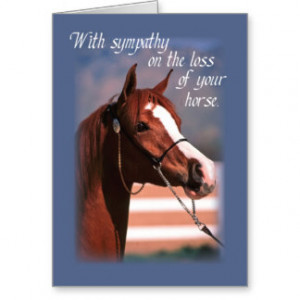 sympathy_loss_of_horse_blue_cards-rb168c7f434d942339b8821342f126a58 ...