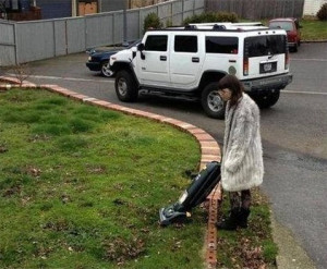 Mowing The Lawn With Vacuum Cleaner - Image
