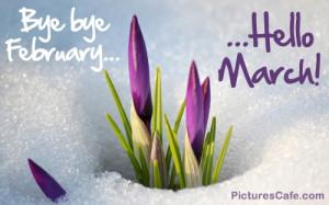 Bye bye February... Hello March!
