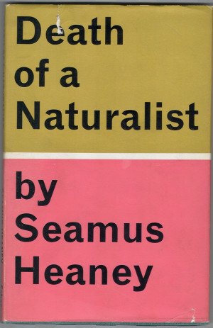 Seamus Heaney And Pieces Of Poetic Wisdom From A Passing In Pink And ...
