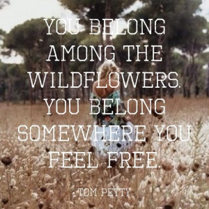 You belong among the wildflowers. Made with QUOTIFUL #quotes