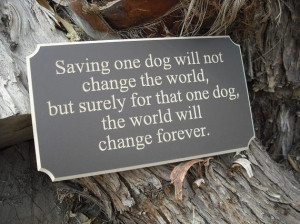 Saving one dog will not change the world, but surely for that one dog ...