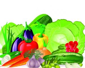Fresh Vegetables Vector Set
