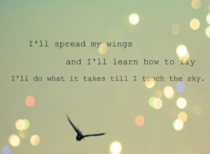 bird, fly, inspiration, life, life quotes, quotes, sky, spread, wings