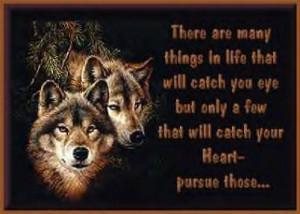 bgr emo 026 kakashi bioshock wolfrose wolf love