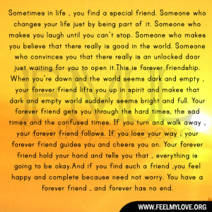 Sometimes in life , you find a special friend